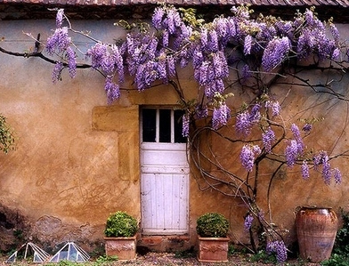 Gallery of Collection 10 Art and Classic Doors Design with Flower Decor & art-and-classic-door-designs-with-flower-decor