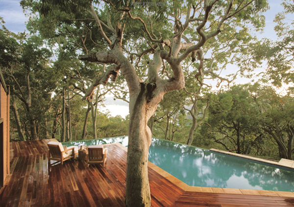 Wood Beach House With View Of The Forest In Australia