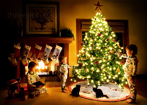 Awesome and beautiful christmas tree decorating ideas for Beautiful christmas decorating ideas