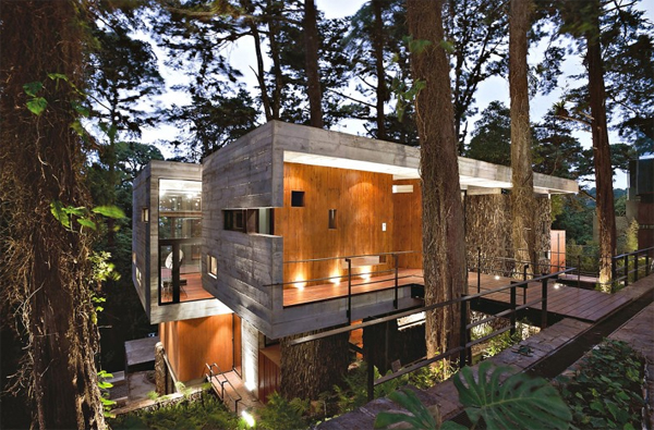 Modern tree house with wood architecture in guatemala for Modern tree house designs