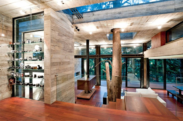 Tree House Interior Designs. Tree House Interior Designs R