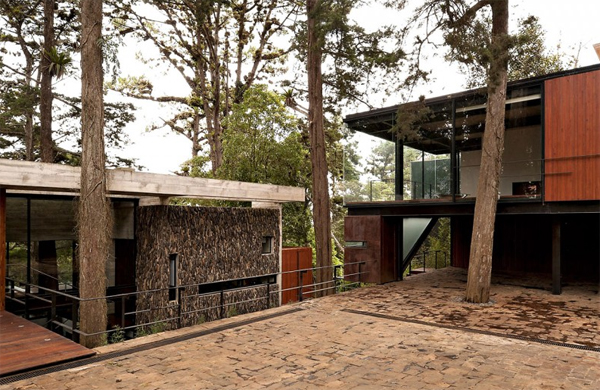 Modern Tree House With Wood Architecture In Guatemala Home Design