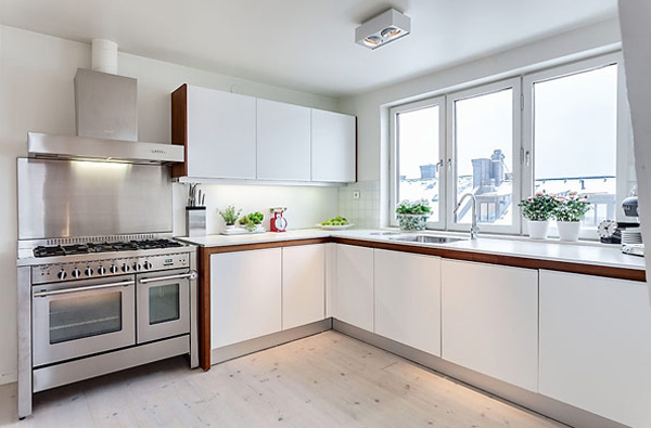 small-and-white-apartment-with-kitchen-design