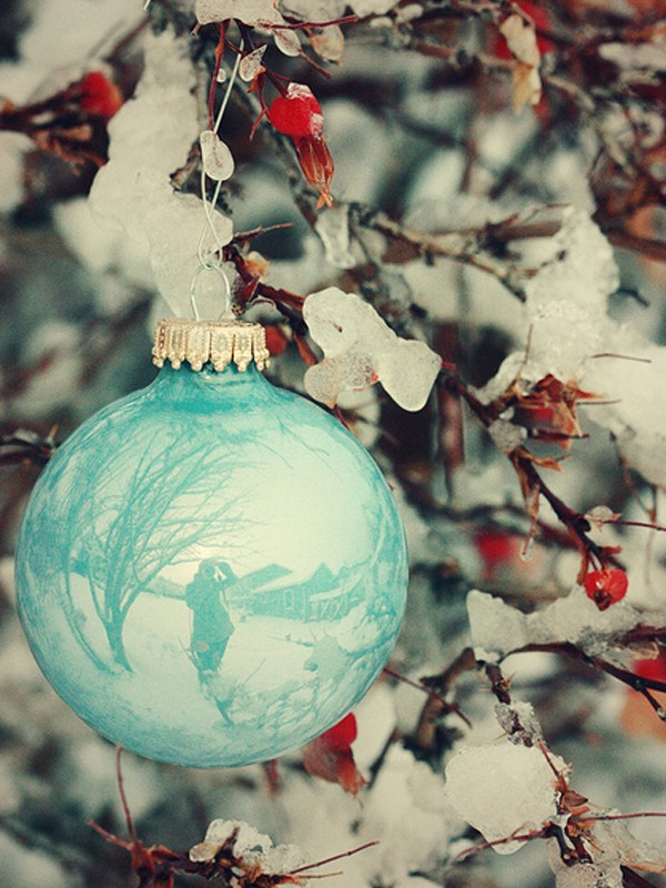 Awesome white christmas ornaments for outdoor decorations for Outside house ornaments