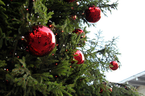 Image gallery outdoor christmas ball ornaments Outdoor christmas tree photos