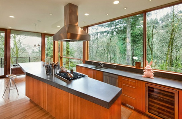 contemporary-kitchen-design-in-twilight-saga-house-by-john-hoke