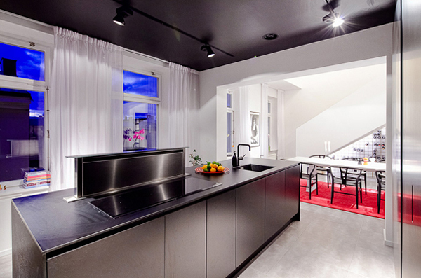modern-and-futuristic-apartments-with-kitchen-design