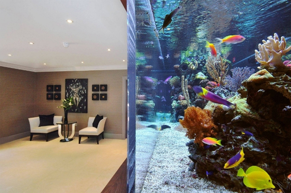 footballers-pad-aquarium-interior-by-aquarium-architecture