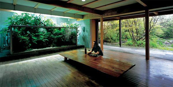Nature Aquariums From Takashi Amano Home Design And Interior