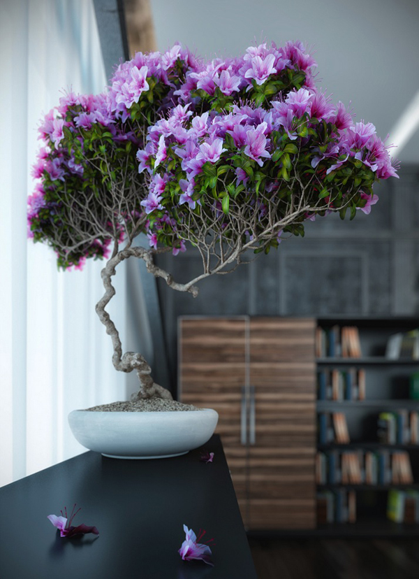 purple-bonsai-tree-ideas
