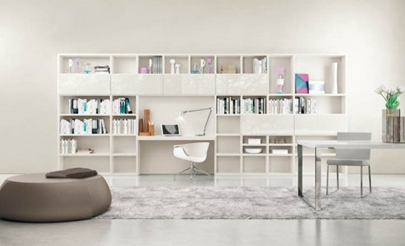 white-living-rooms-with-shelving-units