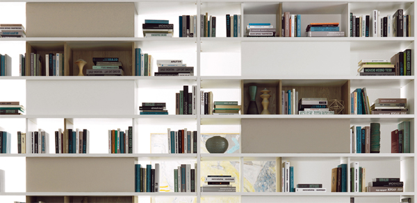Modern Living Room With Shelving Units