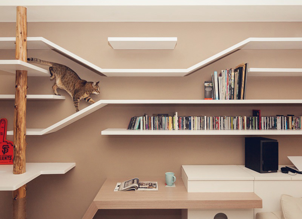 cat house with book storage