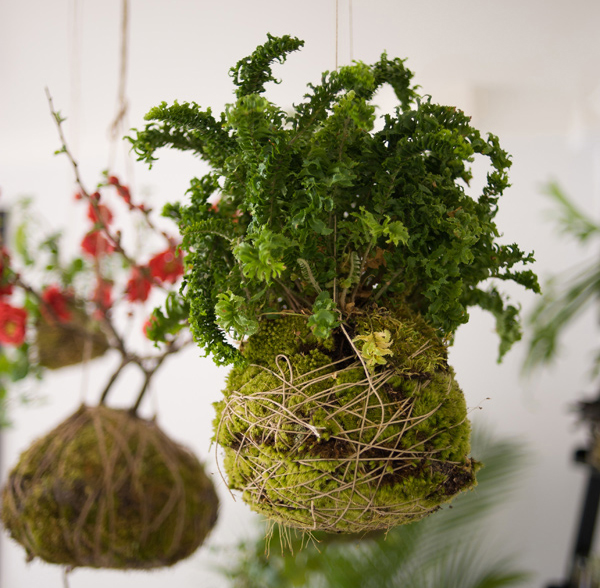 DIY-string-garden-ideas