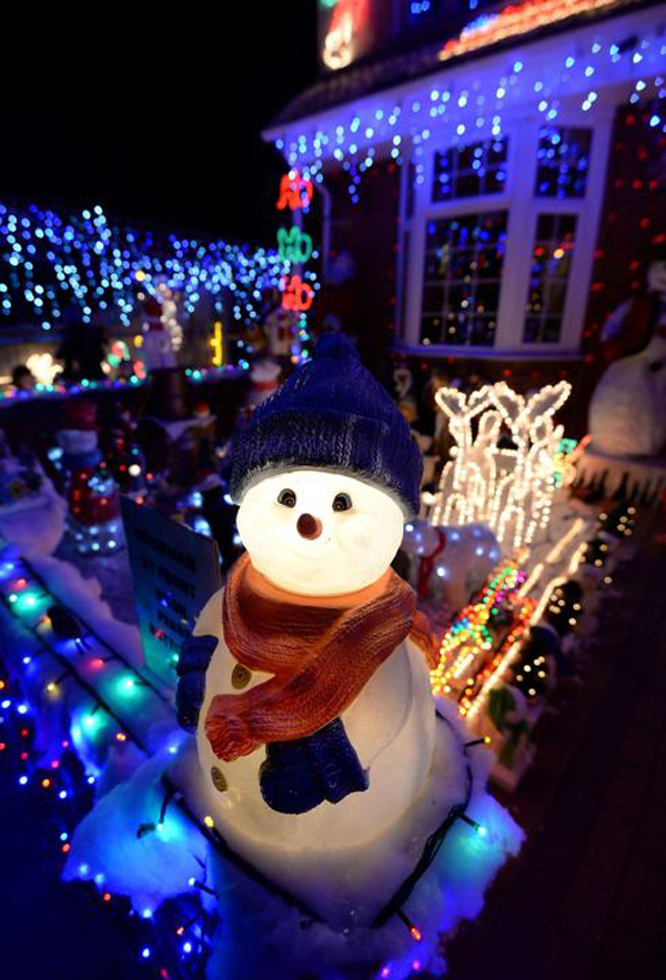 Snow Dool Christmas Lights