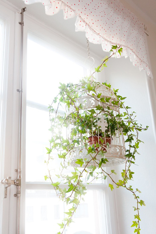 Flower pot birdcage decor