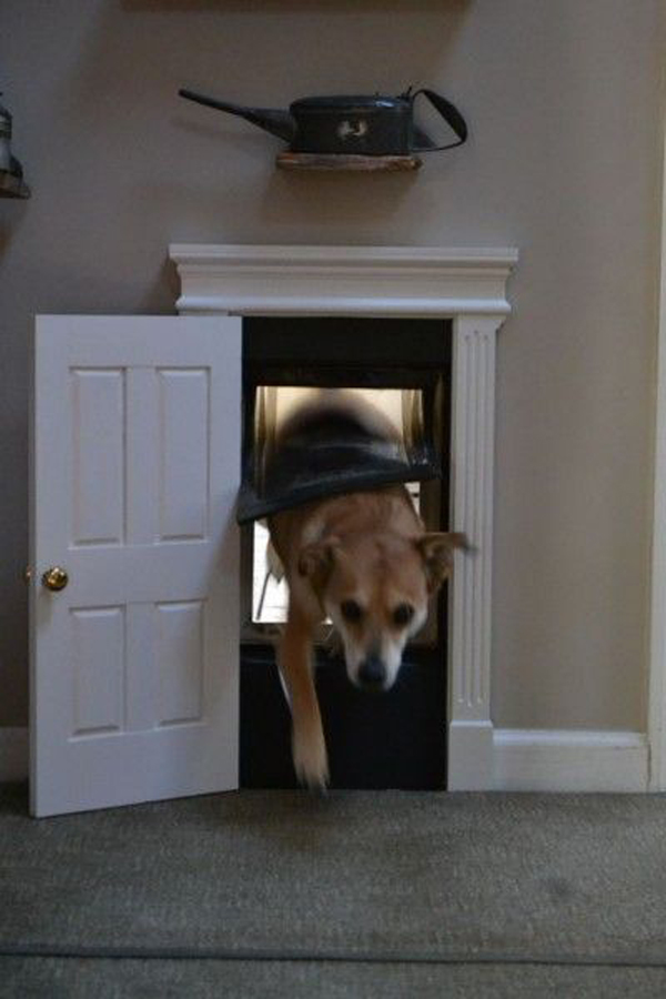Cute Indoor Dog House Door