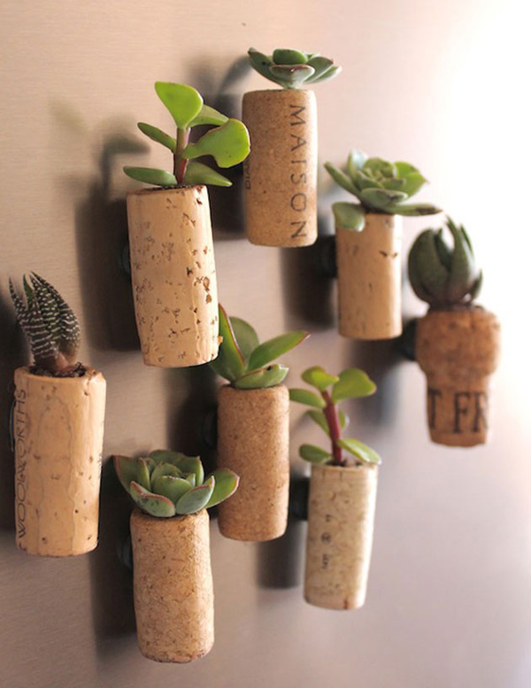 diy-mini-wall-cactus-garden - HomeMydesign