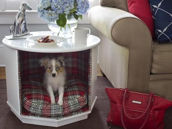 dog-house-under-table