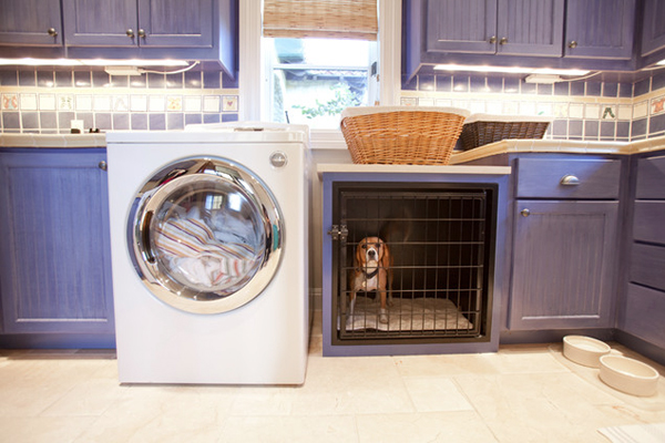 Dog Kennel Room Ideas
