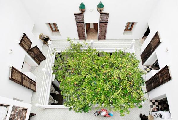 Indoor courtyard garden ideas for House plans with indoor garden