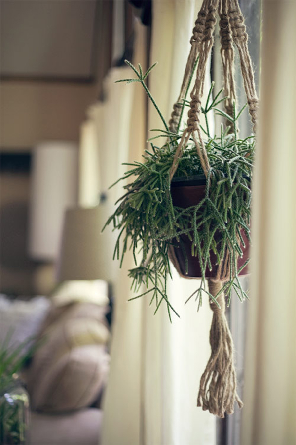 Beautiful Macrame Plant Hanging Design Home Design And