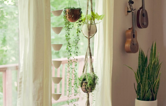 macrame-plants-hanging