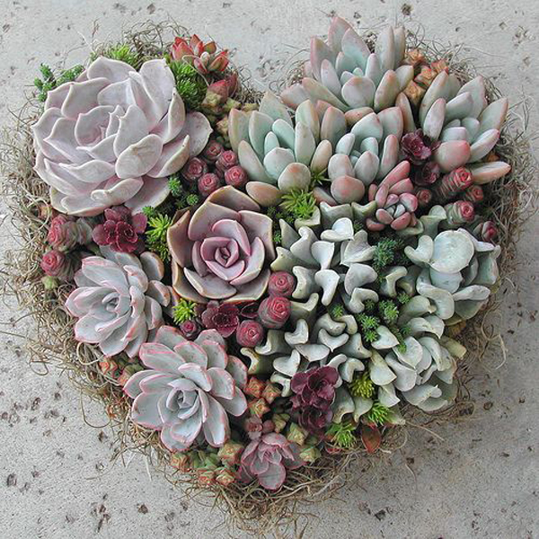 35 Awesome Succulents Garden Ideas Home Design And Interior