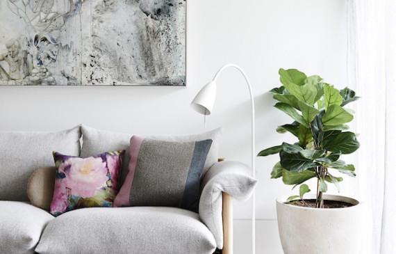 melbourne-apartment-sofas