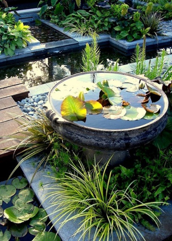 Mini pond design ideas for Mini fish pond design