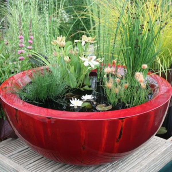 mini ponds for little garden - Little Garden
