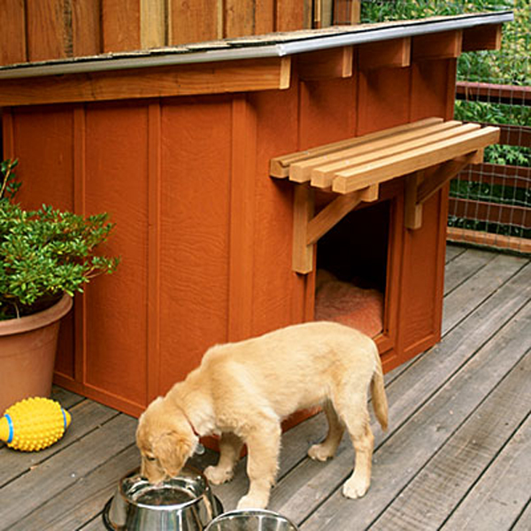 Home Design Ideas For Dogs: 20 Awesome Outdoor Dog Houses