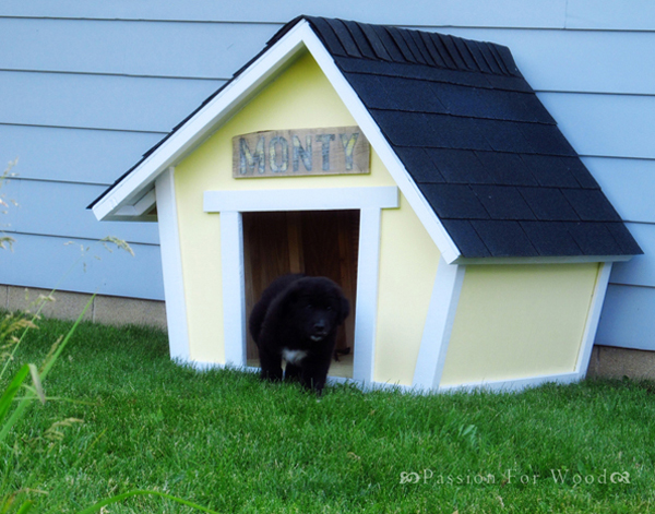 Stupendous Cute And Small Dog House Largest Home Design Picture Inspirations Pitcheantrous