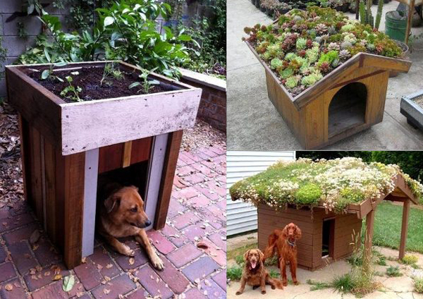 20 awesome outdoor dog houses home design and interior - Casetas pvc exterior ...