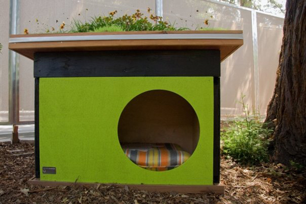 green prefab dog house ideas