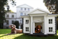 luxury-outdoor-dog-houses