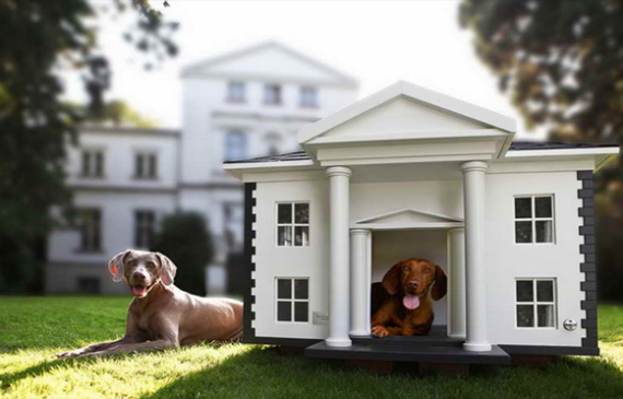 Dog house home design and interior - Luxury outdoor dog houses ...