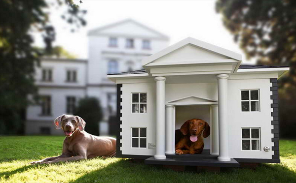 20 awesome outdoor dog houses home design and interior - Luxury outdoor dog houses ...