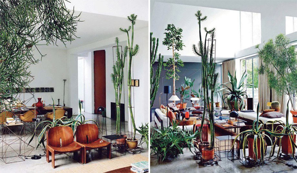 Cacti interior design for Interior design jungle room