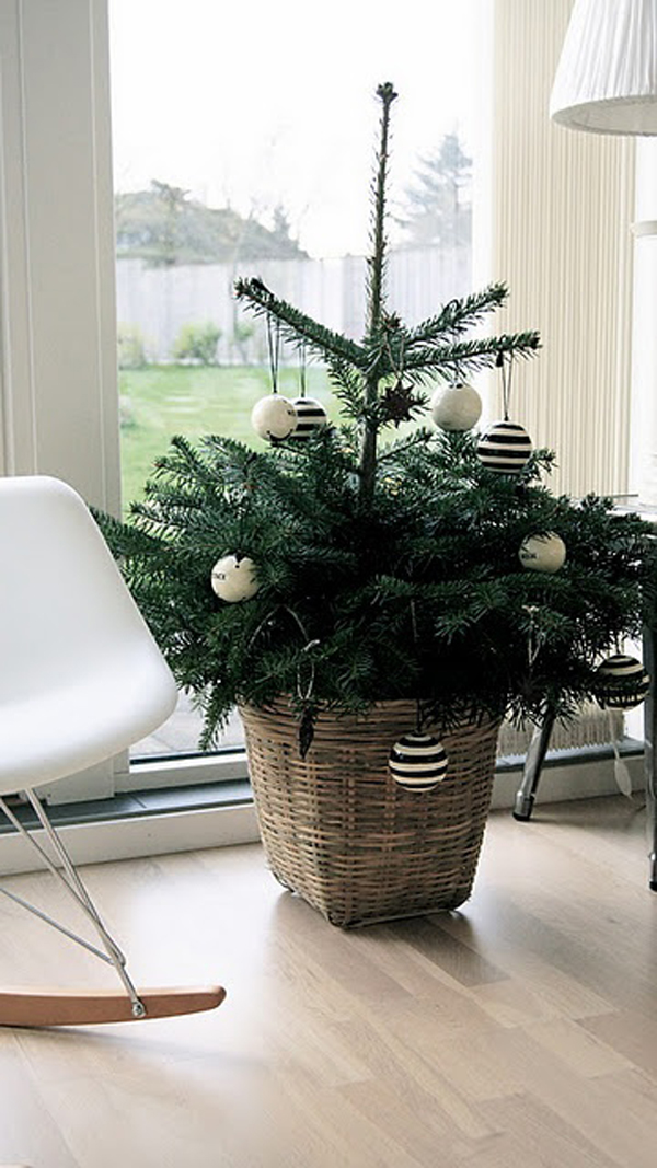 Christmas tree with small space for Small designer christmas trees