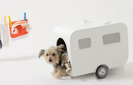 caravan-dog-house-design