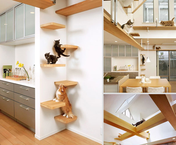 Cat transit system interior ideas - Sofas para gatos ...