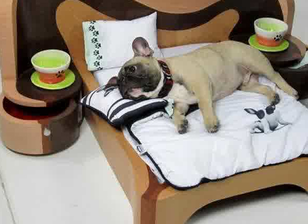 15 creative dog bed design ideas home design and interior for Creative beds