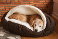 cozy-cave-dog-beds
