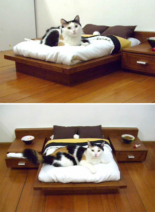 mini cat bedroom furniture. Black Bedroom Furniture Sets. Home Design Ideas