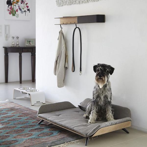 Modern Dog Bed Ideas