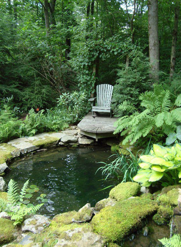 Beautiful Backyard Ponds : Beautiful Backyard Ponds Related Keywords & Suggestions  Beautiful