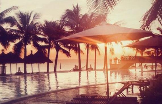 beach-ocean-palm-tree-pools