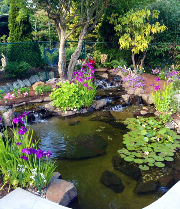 20 beautiful backyard pond ideas home design and interior for Pond and garden