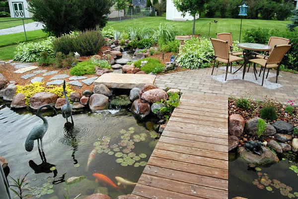 - Beautiful-backyard-ponds